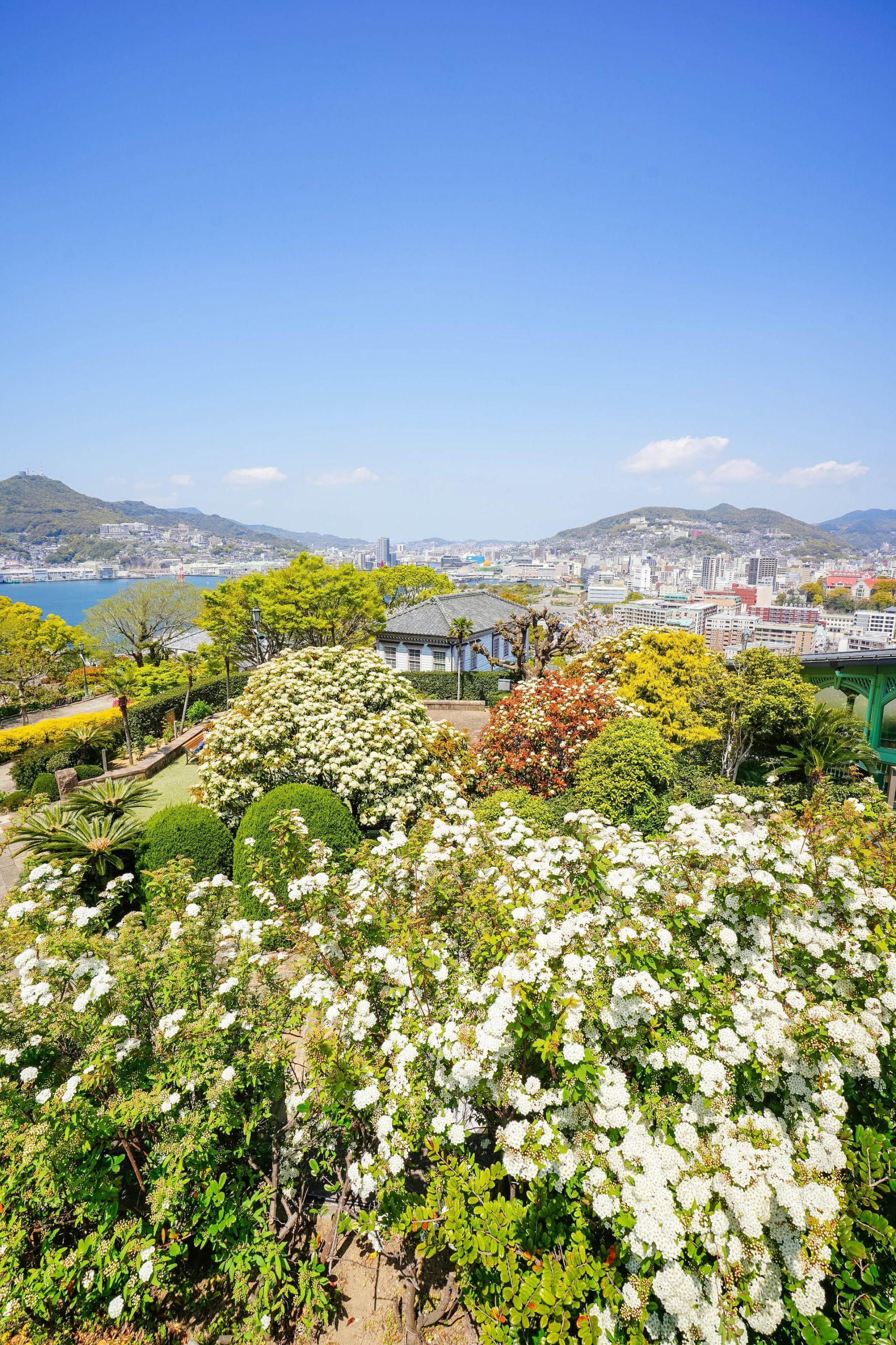 האי קיושו – יפן